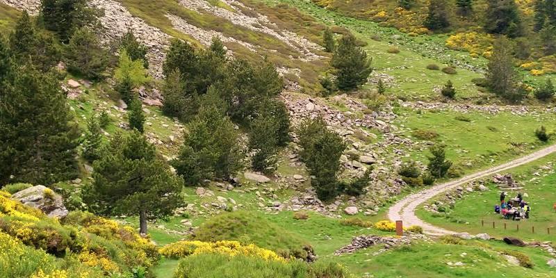 chemin forestier de balatg