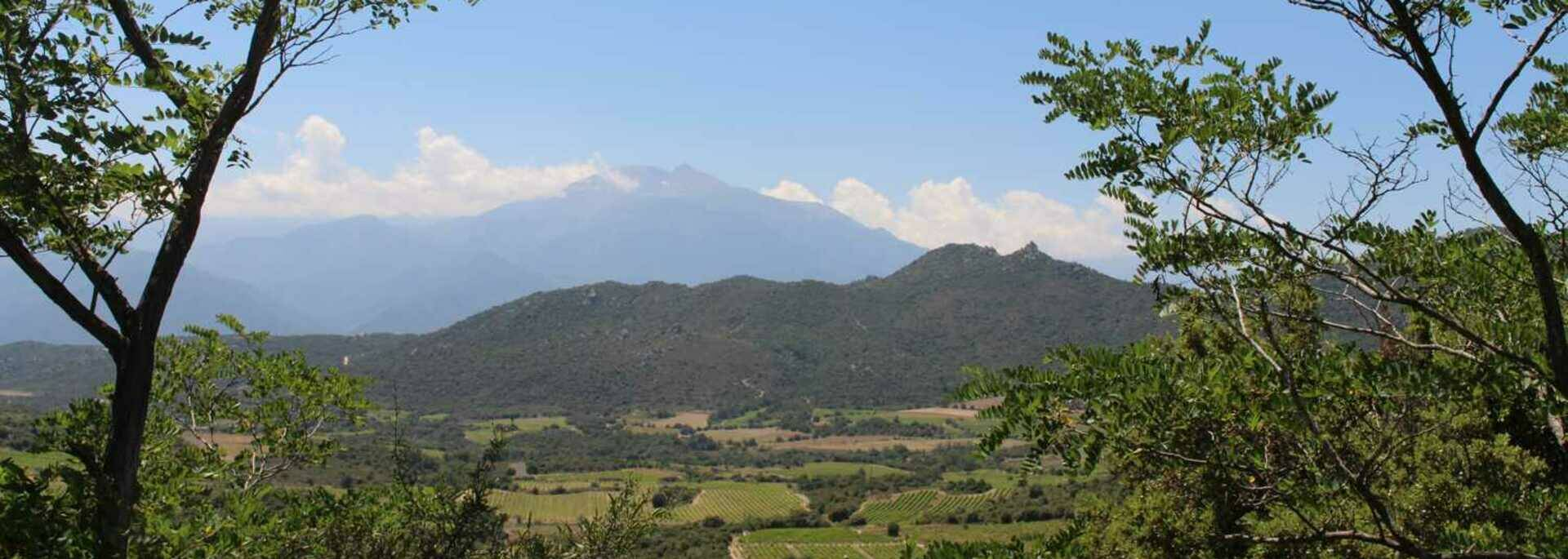Le Canigo depuis Tarerach