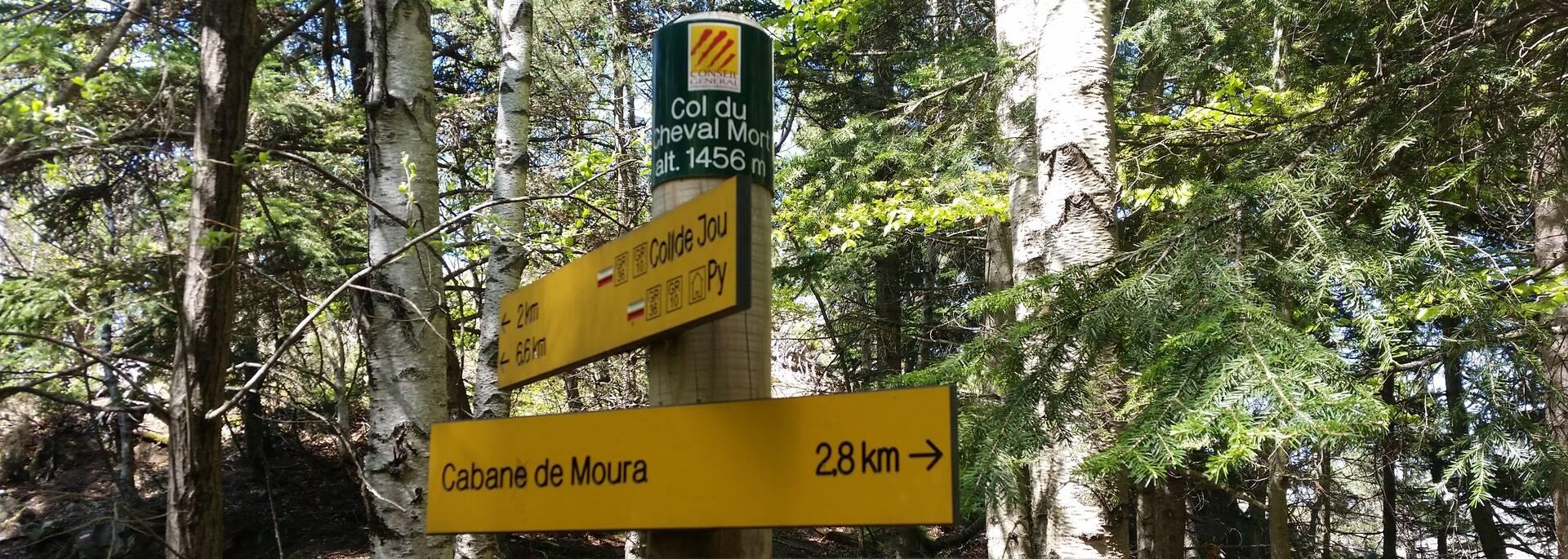 Col du Cheval Mort