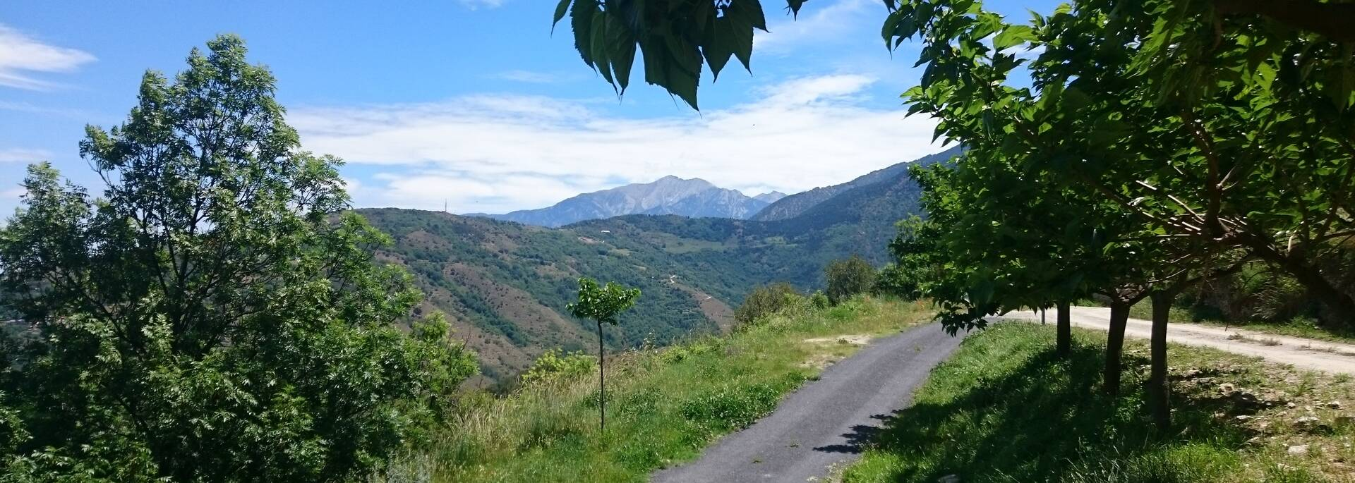 Vue du Canigou depuis Canaveilles