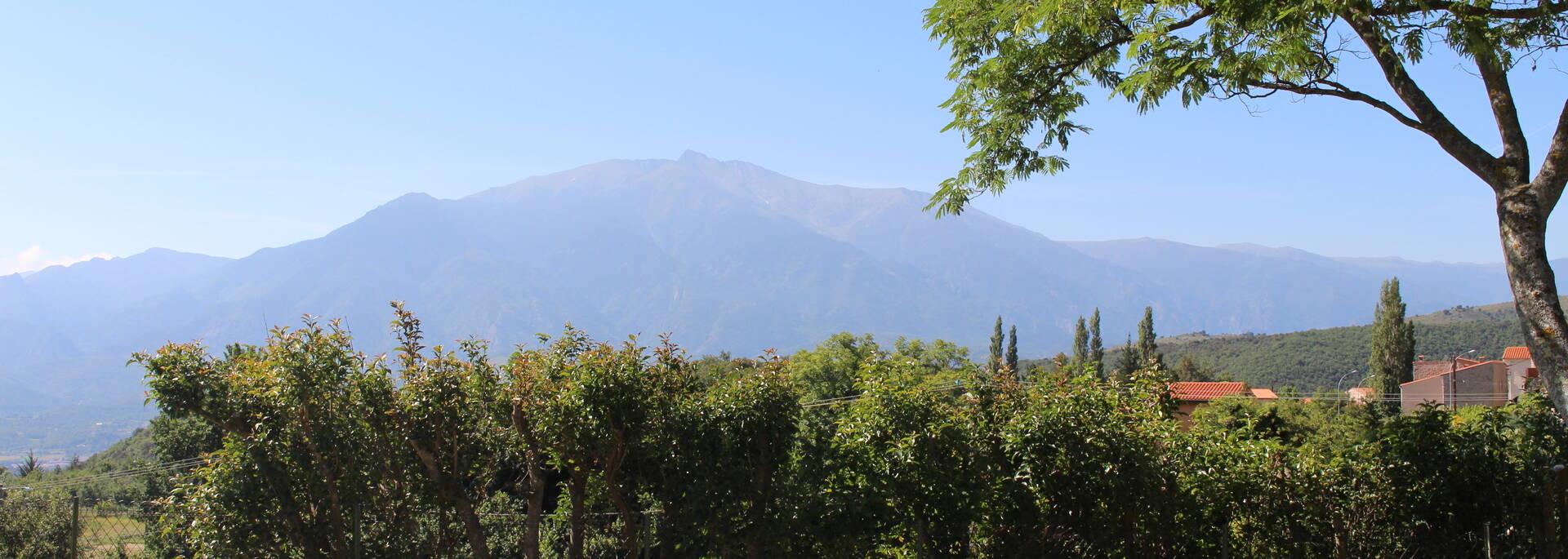 Vue du Canigou depuis Molitg les Bains