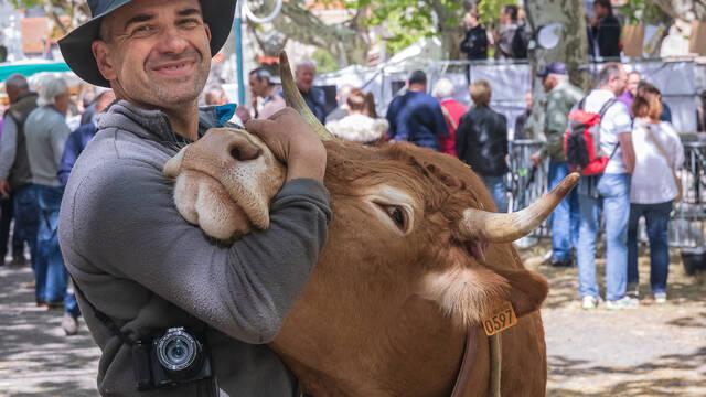 Fête de l'élevage à Vinça