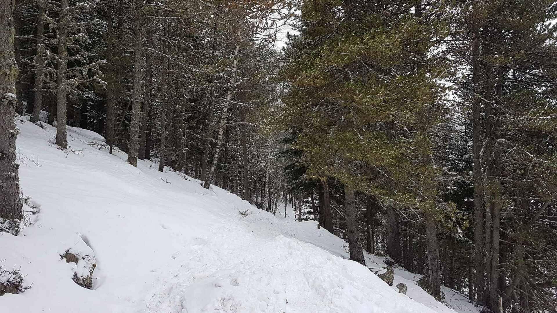 mantet neige