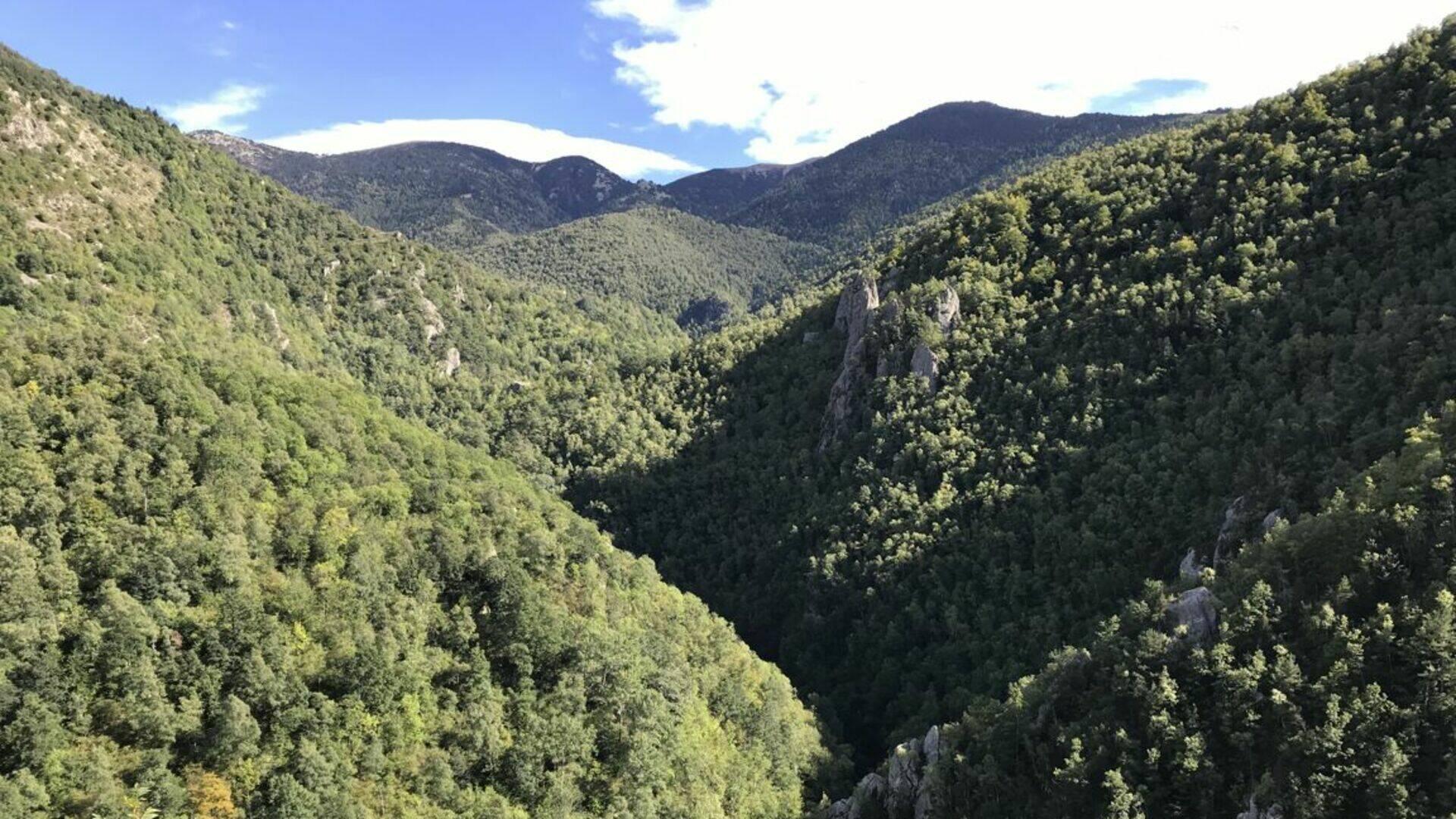 réserve naturelle de py