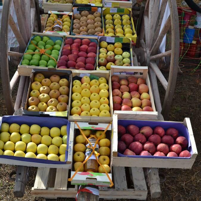 Fête de la pomme Sahorre Fuilla