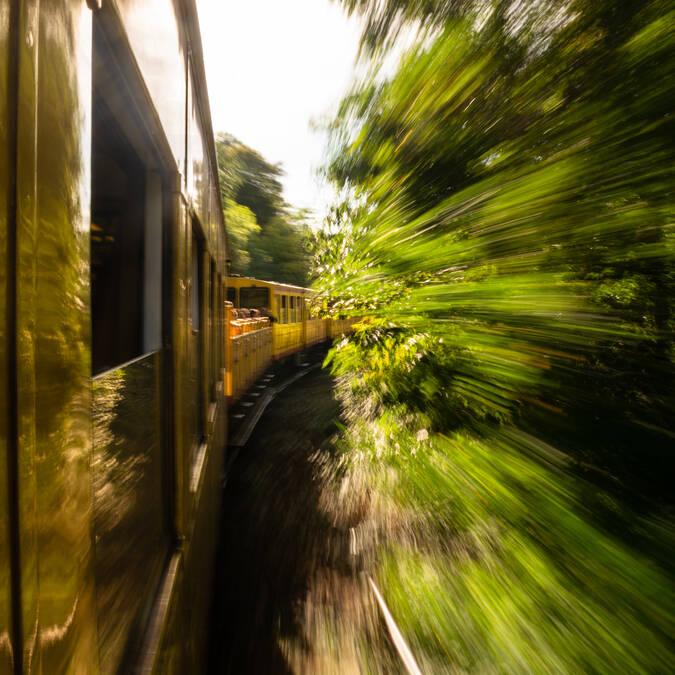 à bord du Train Jaune ©GabrielBransolle tous droits réservés